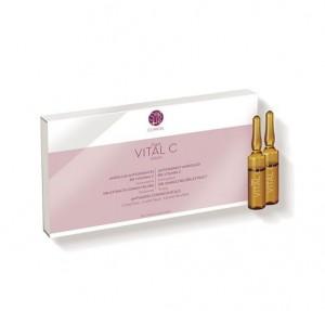 Vital C Ampollas Flash, 10 x 2 ml. - Segle Clinical